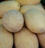 Uzbek melons on the market Royalty Free Stock Photo