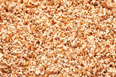 Uzbek rice Stock Photo