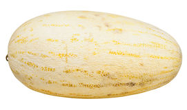 Uzbekisk-ryss melon som isoleras på vit Fotografering för Bildbyråer