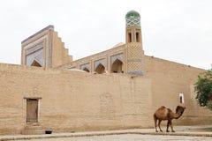 uzbekistan Imagem de Stock Royalty Free