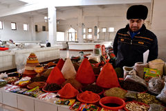uzbekistan Royaltyfria Bilder