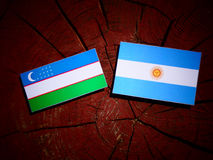 Uzbekistan flag with Argentinian flag on a tree stump. Uzbekistan flag with Argentinian flag on a tree stump Stock Photos