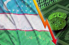 Uzbekistan flag and cryptocurrency falling trend with two bitcoins on dollar bills and binary code display. Concept of reduction Bitcoin in price and bad stock photography