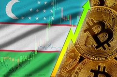 Uzbekistan flag and cryptocurrency growing trend with many golden bitcoins. Uzbekistan flag  and cryptocurrency growing trend with many golden bitcoins. Concept vector illustration