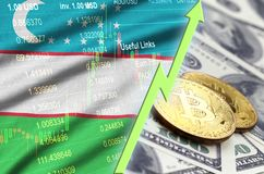 Uzbekistan flag and cryptocurrency growing trend with two bitcoins on dollar bills. Concept of raising Bitcoin in price against the dollar stock illustration