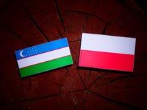 Uzbekistan flag with Polish flag on a tree stump isolated. Uzbekistan flag with Polish flag on a tree stump stock illustration