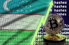 Uzbekistan flag and rising green arrow on bitcoin mining screen and two physical golden bitcoins. Concept of high conversion in cryptocurrency mining vector illustration