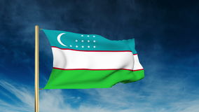 Uzbekistan flag slider style. Waving in the wind. With cloud back animation stock video