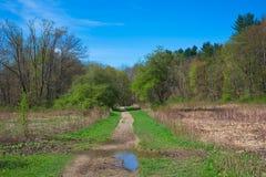 Uzda ślad przez łąkę w Ohio obrazy stock