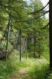 Uzdy ścieżka, anta siatka w górach, Obraz Royalty Free