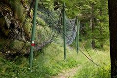 Uzdy ścieżka, anta siatka w górach, Fotografia Royalty Free