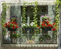 Uzes (Франция) Стоковое Фото