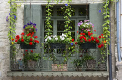 Uzes (France). Uzes (Gard, Languedoc-Roussillon, France) - Old typical house with flowers Royalty Free Stock Photography