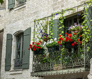 Uzes (France). Uzes (Gard, Languedoc-Roussillon, France) - Old typical house with flowers Stock Image