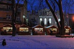 Uzhgorod de Oekraïne 7 JANUARI, van de de Wintersneeuw van 2017 de de nachtstad van de binnenstad Uzhgorod de Oekraïne Stock Foto
