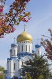 Uzhgorod Orthodox Cathedral, Ukraine Stock Image