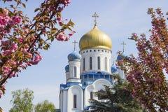 Uzhgorod Orthodox Cathedral, Ukraine Royalty Free Stock Photo
