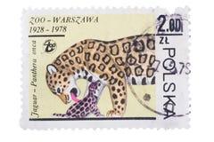 UZHGOROD, UCRAINA - CIRCA MAGGIO 2016: Raccolta del francobollo Fotografia Stock Libera da Diritti