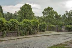 Uzhhorod City Botanical Garden Stock Image