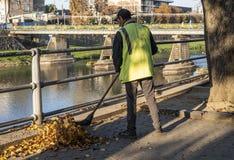 Uzhhorod, Ukraine - October 8,2021: Street cleaner sweeping fallen leaves outdoors in autumn day in Uzhhorod
