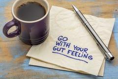 Vá com seu conselho do sentimento de intestino Imagens de Stock Royalty Free