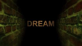 Vá sonhar em um labirinto Busca para seu sonho video estoque