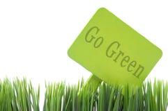 Vá verde assinam dentro a grama fresca Foto de Stock Royalty Free