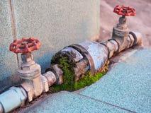 Válvula da água Foto de Stock