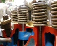 válvula da mola   Foto de Stock
