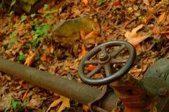 Válvula de la rueda en el tubo de agua en maderas Imagen de archivo