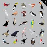 Vária ilustração 1 do vetor dos desenhos animados dos pássaros Foto de Stock