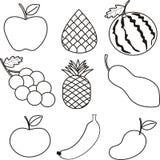 Vária ilustração tirada dos frutos tropicais mão Imagens de Stock Royalty Free