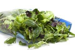 Vária salada sazonal embalada Fotos de Stock
