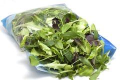 Vária salada sazonal embalada Foto de Stock