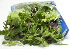 Vária salada sazonal embalada Fotos de Stock Royalty Free