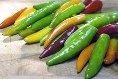 Várias cores das pimentas. Fotos de Stock