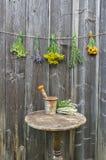 Várias ervas e tabela médicas com o almofariz oxidado velho foto de stock royalty free