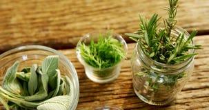 Várias ervas em um frasco na tabela de madeira 4k vídeos de arquivo