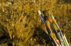 Várias escovas de pintura Fotografia de Stock Royalty Free