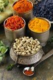 Várias especiarias (cúrcuma, paprika, aç6frão, coentro) Foto de Stock