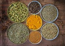 Várias especiarias da cozinha usadas como ervas medicinais foto de stock