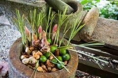 Várias especiarias do alimento/ingrediente imagem de stock royalty free
