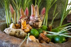 Várias especiarias do alimento/ingrediente imagens de stock royalty free