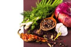 Várias especiarias e ervas, cebola e garlik Imagem de Stock Royalty Free