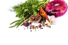 Várias especiarias e ervas, cebola e garlik imagens de stock royalty free