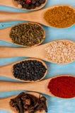 Várias especiarias em colheres de madeira Ingredientes de alimento Tabela de madeira rústica azul Imagem de Stock