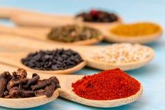 Várias especiarias em colheres de madeira Ingredientes de alimento Tabela de madeira rústica azul Imagem de Stock Royalty Free