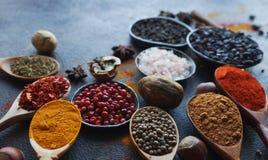 Várias especiarias indianas em colheres e bacias e porcas de madeira do metal na tabela de pedra escura Especiarias coloridas, fo imagens de stock