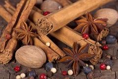Várias especiarias (noz-moscada, canela, anis de estrela, cardamomo, zimbro) Fotografia de Stock