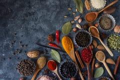 Várias especiarias, porcas e ervas indianas em colheres e em umas bacias de madeira do metal Imagens de Stock